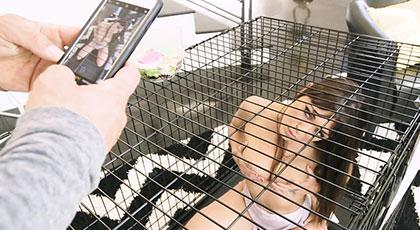 Follando a una animalista enjaulada, Olivia Wilder